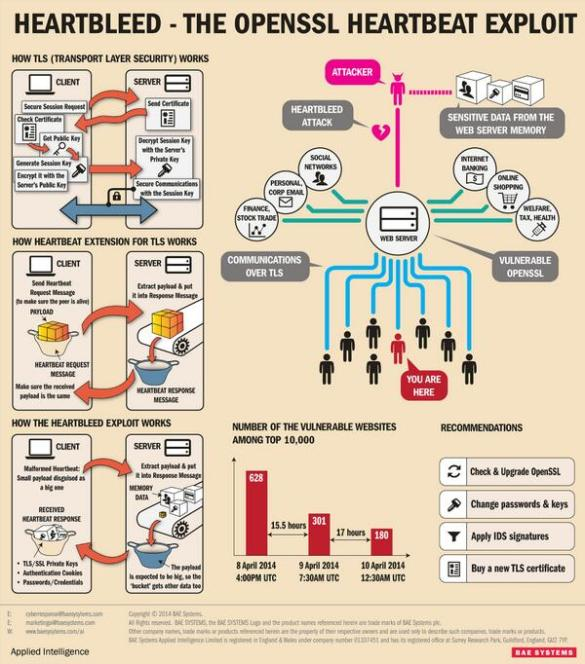 Heartbleed infographic